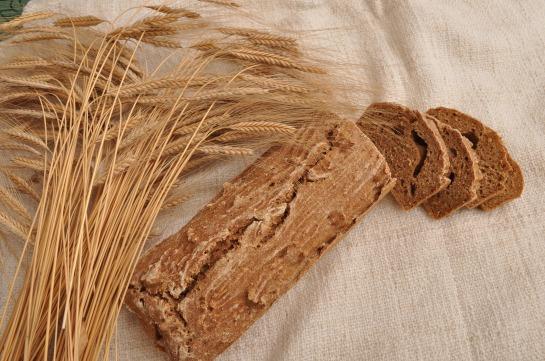 ferma agricola de vanzare 1800 ha, silozuri, fabrica de paine, sistem integrat, afacere la cheie.