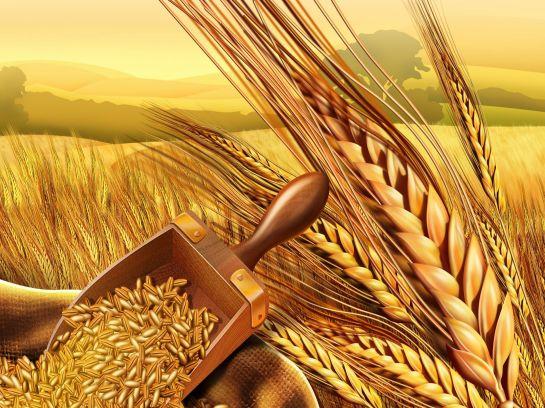 Teren agricol de vanzare cu posibilitatea de a forma o ferma agricola cu suprafata de maxim 4500 ha.